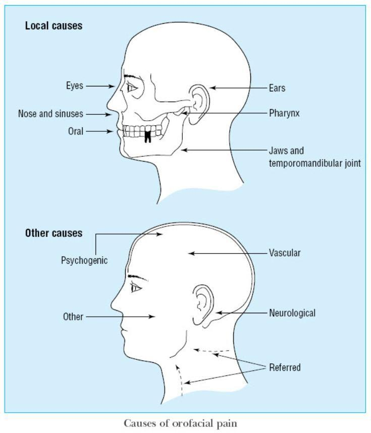 best of Facial pain Neurological