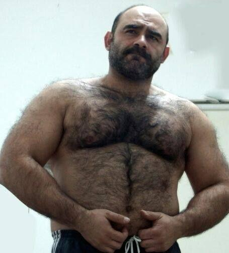 Agree daddy muscle hairy stories erotic phrase